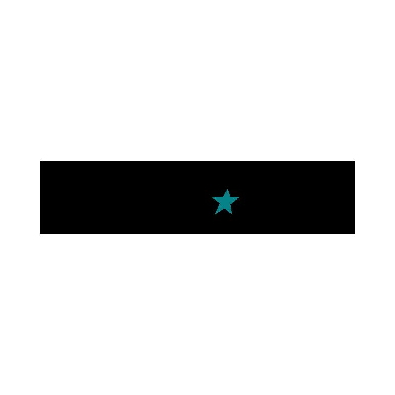 Z Adesa logo