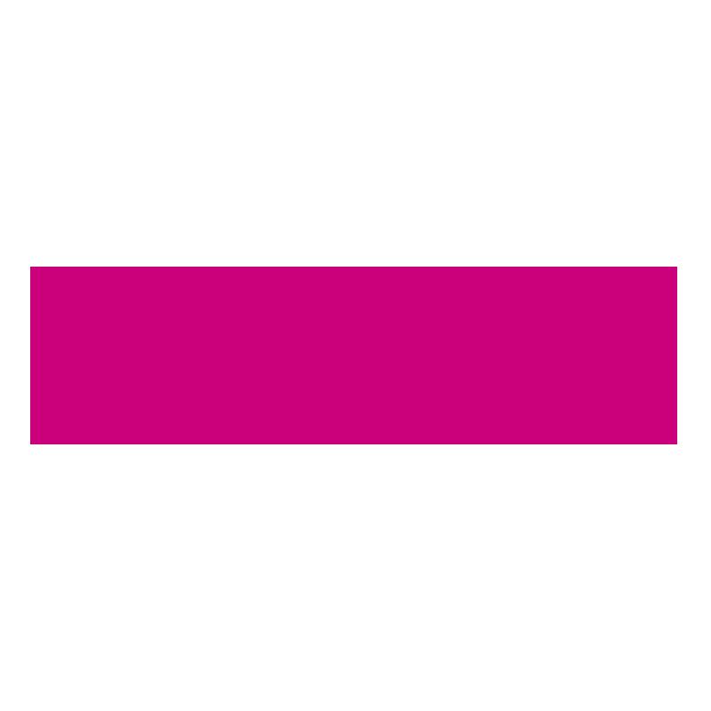 Z Birmingham St Marys Hopice logo
